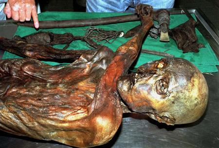 An undated handout file photo shows ''Otzi'', Italy's prehistoric iceman. Scientists examining the remains of ''Otzi,'' Italy's prehistoric iceman who roamed the Alps some 5,300 years ago, said on May 2, 2012 they have isolated what are believed to be the oldest traces of human blood ever found. REUTERS/Handout/Files.