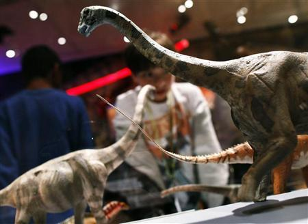 Visitors look at dinosaur replicas at ''The World's Largest Dinosaurs'' exhibit at the American Museum of Natural History in New York April 13, 2011. REUTERS/Shannon Stapleton