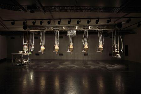 The installation ''Cloaca Professional, 2010'' by Belgium artist Wim Delvoye, which has been labelled the ''poo-machine'' is shown on display at the Museum of Old and New Art (MONA) in Hobart in this undated handout picture. REUTERS/MONA/Leigh Carmichael/Handout