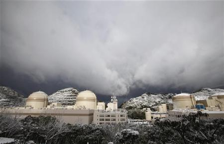 Kansai Electric Power Co's Ohi nuclear power plant (R-L) No.1, No. 2. No.3 and No.4 reactors are seen in Ohi, Fukui prefecture January 26, 2012. REUTERS/Issei Kato