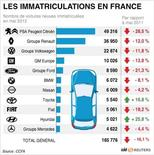 <p>LES IMMATRICULATIONS EN FRANCE</p>