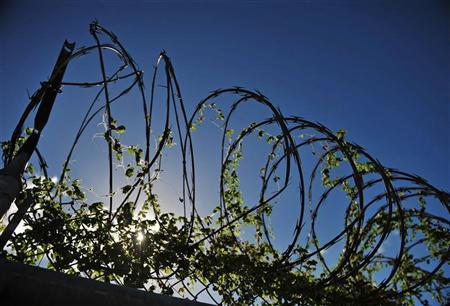 An image reviewed by the US military shows razor-wire on top of a fence overgrown with weeds at the closed ''Camp X-Ray'' at US Naval Station Guantanamo Bay, Cuba, December 9, 2008. REUTERS/Mandel Ngan/Pool