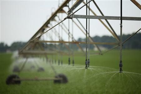 A new pivot-irrigation system is seen in Mill Creek, Indiana, June 11, 2012. REUTERS/John Gress