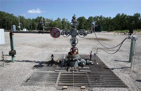 An Encana production well for oil and natural gas is seen in a state forest park in Kalkaska, Michigan, June 20, 2012. Picture taken June 20, 2012. REUTERS/Rebecca Cook