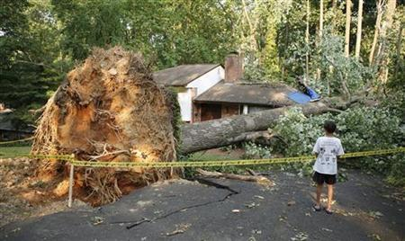 A child looks at a house struck by a tree after a violent thunderstorm ripped through the area on Saturday evening, in Falls Church, Virginia June 30, 2012. REUTERS/Kevin Lamarque