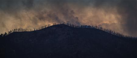 Plumes of smoke from the Waldo Canyon Fire rises above trees in Colorado Springs, Colorado June 30, 2012. Firefighters battling a deadly Colorado wildfire that ranks as the most destructive in state history have made enough headway to allow most residents forced to flee the blaze back into their homes, officials said on Saturday. REUTERS/Adrees Latif
