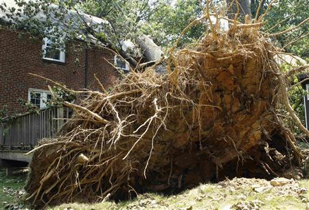 An uprooted tree with its trunk resting on a house, is pictured in Silver Spring, Maryland July 3, 2012. Nearly 1.4 million homes and businesses in the eastern U.S. remained without power amid a heat wave on Tuesday, and storm damage forced many Fourth of July celebrations to be cancelled. Violent weekend storms and days of record heat have killed at least 22 people in the United States since Friday. Some died when trees fell on their homes and cars, and heat stroke killed others. REUTERS/Gary Cameron
