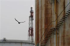 Птица пролетает мимо котла на нефтеперерабатывающем заводе в городе Кавасаки, 5 июля 2012 года. Япония не будет покупать нефть у Ирана в июле, сообщили в среду источники в отрасли и в правительстве Японии. REUTERS/Toru Hanai