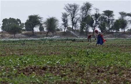 Farmers work in a field against the backdrop of under-construction Kundli-Manesar-Palwal (KMP) Expressway at Manesar, about 60 km (38 miles) south of New Delhi, June 15, 2012. REUTERS/Adnan Abidi