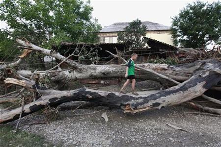 A boy walks on an uprooted tree in a street, hit by floods, in the town of Krymsk in Krasnodar region, southern Russia, July 8, 2012. REUTERS/Eduard Korniyenko