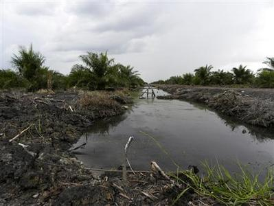 A canal cuts through deep peat land at a palm oil plantation near Sebangau Kuala, Pulang Pisau regency in Central Kalimantan June 19, 2012. REUTERS/David Fogarty