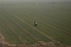 Фермер разбрасывает удобрения на поле в окрестностях китайского города Чжэнчжоу, 13 февраля 2009 года. Российский агрохимический холдинг Акрон в пятницу увеличил цену предложения о покупке двух третей крупнейшей химической компании Польши Azoty Tarnow до 45 злотых за акцию, ранее не сумев убедить инвесторов продать бумаги по 36 злотых. REUTERS/David Gray