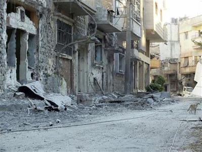 A cat walks in a destroyed neighborhood in Homs July 14, 2012. REUTERS/Yazen Homsy