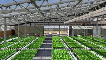 An artist's rendering shows BrightFarms proposed facility in Sunset Park, Brooklyn. REUTERS/BrightFarms/Handout