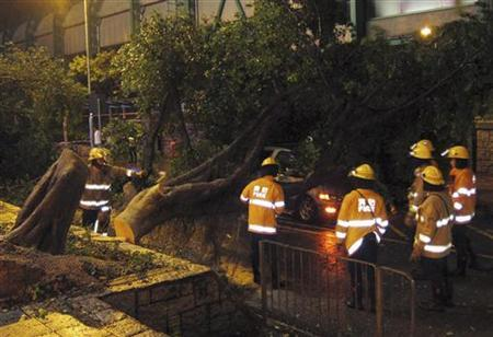 Firemen try to remove a broken tree which hit a car, in which the driver left safely, during a typhoon in Hong Kong's rural Taipo district July 23, 2012. REUTERS/Bobby Yip