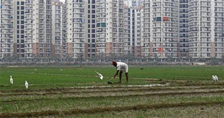 A farmer works in a wheat field against the backdrop of residential apartments undergoing construction in Noida on the outskirts of New Delhi January 1, 2012. REUTERS/Parivartan Sharma/Files