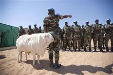 A sheep passes Senegalese troops standing in formation for the arrival of African Union?United Nations mission in Darfur (UNAMID) Force Commander Lieutenant General Patrick Nyamvumba of Rwanda at the Umm Baru team site February 22, 2012. REUTERS/UNAMID/Albert Gonzalez Farran/Handout