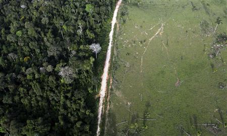 An aerial view shows illegal deforestation close to the Amazonia National Park in Itaituba, state of Para May 25, 2012. REUTERS/Nacho Doce