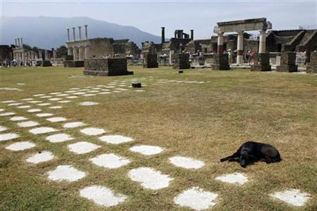 A dog lies on the ground in Pompeii, the famous city next to Naples which was destroyed in AD 79 by the eruption of Mount Vesuvius July 17, 2008. REUTERS/Giampiero Sposito