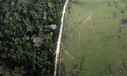 Vista aérea de uma área desmatada ilegalmente próximo ao Parque Nacional da Amazônia em Itaituba, no Estado do Pará, em maio. 25/05/2012 REUTERS/Nacho Doce