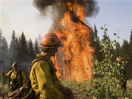 U.S. Forest Service firefighters work on the Springs Fire in Boise National Forest near Banks-Garden Valley, Idaho in this August 13, 2012 photograph made available to Reuters on August 17, 2012. REUTERS/Kari Greer/US Forest Service/Handout