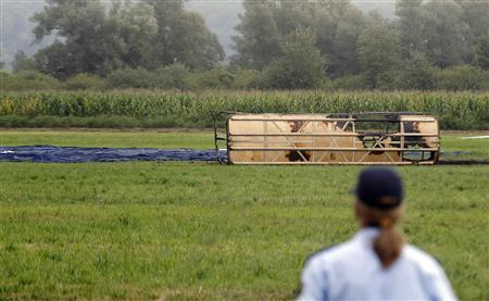 A police officer stands near a crashed hot-air balloon in Ig near Ljubljana August 23, 2012. Four people were killed and 28 injured when the balloon carrying tourists, including children, caught fire and came down near the Slovenian capital Ljubljana on Thursday, the police said. REUTERS/Srdjan Zivulovic