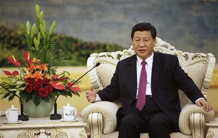 China's Vice President Xi Jinping speaks with Egypt's President Mohamed Mursi (not pictured) during a meeting at the Great Hall of the People, in Beijing August 29, 2012. REUTERS/How Hwee Young/Pool