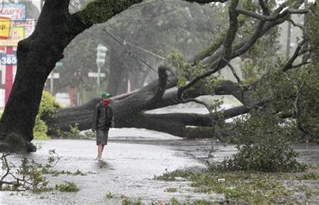 A man stands in front of an uprooted oak tree on Louisiana Avenue as Hurricane Isaac makes land fall in New Orleans, Louisiana August 29, 2012. REUTERS/Sean Gardner