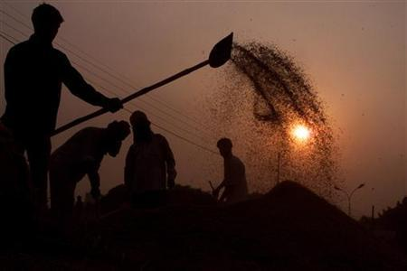 A man uses a spade to separate the grain from the chaff at a grain market in Amritsar, early morning September 21, 2004. REUTERS/Munish Sharma/Files