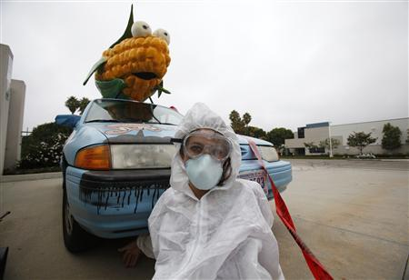 A protester against Genetically Modified Organisms (GMO) is chained to a vehicle while blocking a delivery entrance to a Monsanto seed distribution facility in Oxnard, California September 12, 2012. REUTERS/Mario Anzuoni