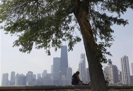 A woman sits in the shade under a tree along the water near North Avenue Beach in Chicago, July 20, 2011. REUTERS/Jim Young