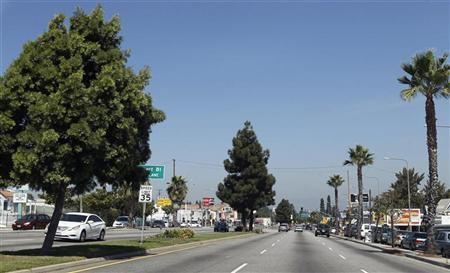 Large trees are pictured along Crenshaw Boulevard in Inglewood, California September 18, 2012. REUTERS/Fred Prouser