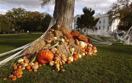 A autumn display of pumpkins and gourds adorns the White House lawn on Halloween October 31, 2011. REUTERS/Kevin Lamarque