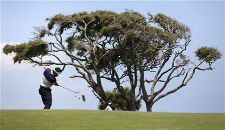Trevor Immelman of South Africa hits his approach shot on the second fairway during the final round of the PGA Championship golf tournament at The Ocean Course on Kiawah Island, South Carolina, August 12, 2012. REUTERS/Mathieu Belanger