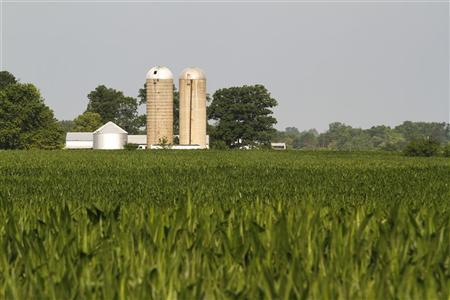 A farm is seen in the distance behind corn fields in Redkey, Indiana June 28, 2012. REUTERS/Brent Smith