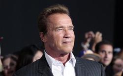 """O ator Arnold Schwarzenegger disse em entrevista à TV que o caso com a governanta de sua casa foi """"a coisa mais estúpida"""" que fez no seu casamento com Maria Shriver. Foto de arquivo. 15/08/2012 REUTERS/Mario Anzuoni"""