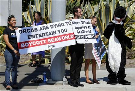 Demonstrators from the People for the Ethical Treatment of Animals (PETA) protest against a killer whale's injury outside SeaWorld in San Diego October 3, 2012. REUTERS/Mike Blake