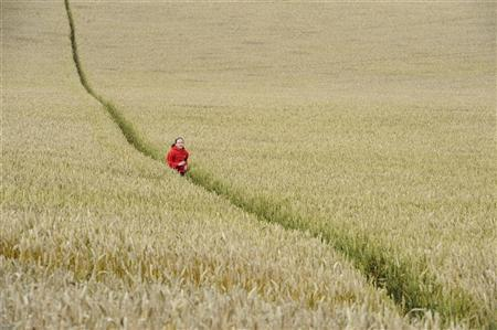 Meagan Williamson, 12, runs through a field of wheat in Kirby Hill, northern England July 26, 2011. REUTERS/Nigel Roddis