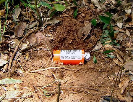 The voice recorder of the Boeing 737-800 Gol airlines flight 1907 that crashed on September 29 is seen on the floor of the Amazon jungle, where it was found by members of the Brazilian armed forces, October 24, 2006, in this October 25, 2006 handout. REUTERS/Brazilian Air Force/Handout