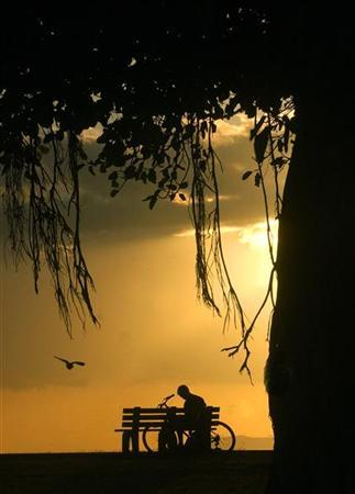 A man rests and reads a book under a banyan tree during sunset on Magic Island near Waikiki in Honolulu, Hawaii May 9, 2005. REUTERS/Lucy Pemoni