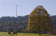 Cows are seen in front of wind turbines in a wind farm of BKW in Mont Soleil in the Jura region, western Switzerland October 7, 2010. REUTERS/Michael Buholzer