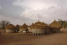 A view of traditional mud houses in Dareta village, in the northern state of Zamfara, June 4, 2010. REUTERS/Stringer