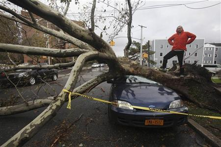 An unidentified pedestrian strikes a pose as fallen trees lie across parked cars in the borough Queens, New York October 30, 2012. REUTERS/ Gil Cohen Magen