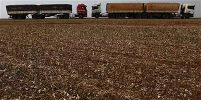 The long, brutal haul from farm to port in Brazil