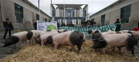 Farmers hold a banner which reads ''Against genetic engineering and dioxin in our food'' after they placed pigs in front of the Chancellery during a protest in Berlin January 19, 2011. Farmers protest against the animal feed production after a health alert following the discovery of the highly toxic chemical dioxin in feed. REUTERS/Fabrizio Bensch (GERMANY - Tags: POLITICS FOOD)