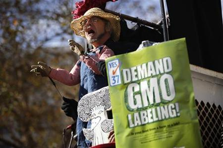 Jonathan Youtt, of Oakland, performs a puppet show during a rally in support of the state's upcoming Proposition 37 ballot measure in San Francisco, California October 6, 2012. REUTERS/Stephen Lam