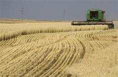 Комбайн собирает пшеницу у города Акколь в Казахстане 11 октября 2011 года. Казахстан, крупнейший производитель зерна в Центральной Азии, понизил прогноз экспорта зерна в этом маркетинговом году на один миллион тонн до 7,0 миллиона, сказал журналистам министр сельского хозяйства Асылжан Мамытбеков. REUTERS/Shamil Zhumatov