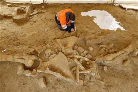 A French archaeologist from the French National Institute for Preventive Archaeological Research (INRAP) works to finish up the excavation of remains from a preserved woolly mammoth skeleton, nicknamed 'Helmut' by the excavation team and estimated to date from 125,000 to 200,000 years ago, at a quarry site in Changis-sur-Marne, East of Paris, November 8, 2012. REUTERS/Benoit Tessier
