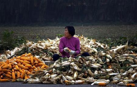 A woman sits on a pile of corn as she removes the husks on a road located on the outskirts of Beijing September 25, 2012. REUTERS/David Gray/Files