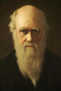 A detail of British artist John Collier's 1883 painting of Charles Darwin is displayed as part of an exhibition in Darwin's former home, Down House, in Kent, southern England February 12, 2009. REUTERS/Tal Cohen (BRITAIN)